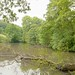 POND IN MOSS VALLEY, DERBYSHIRE_DSC_9584_LR_2.5