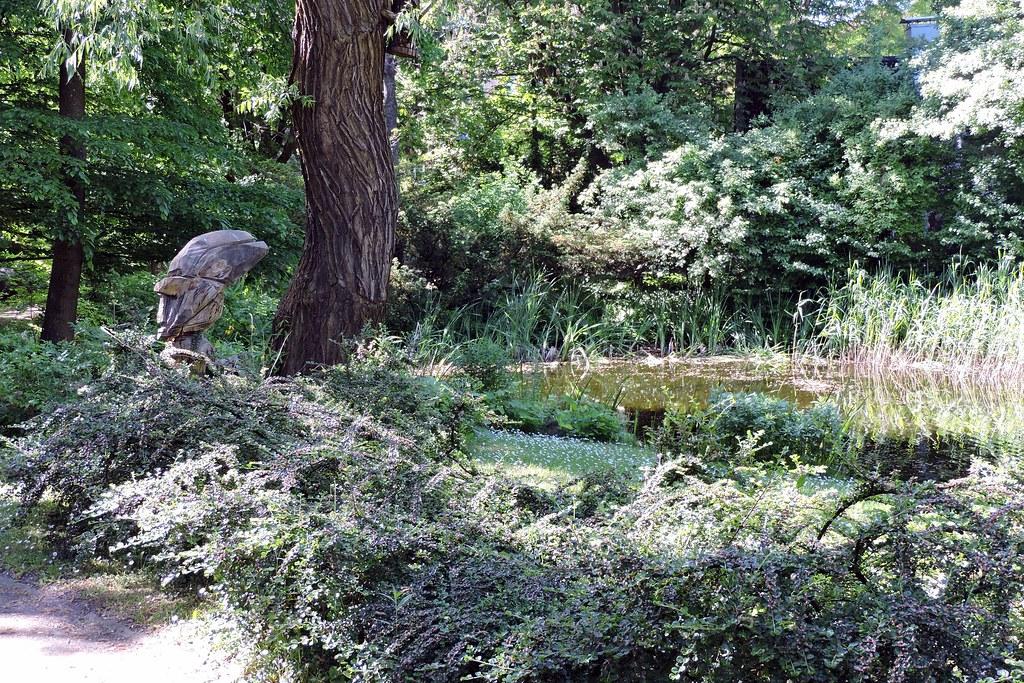 Jardin botanique de l'Université Casimir le Grand