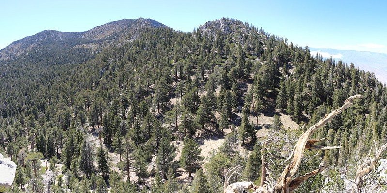 View northwest toward San Jacinto Peak from the summit of Yale Peak. Harvard Peak is on the right.