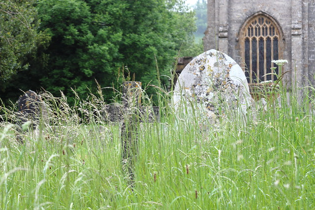 Churchyard, Piddletrenthide 1