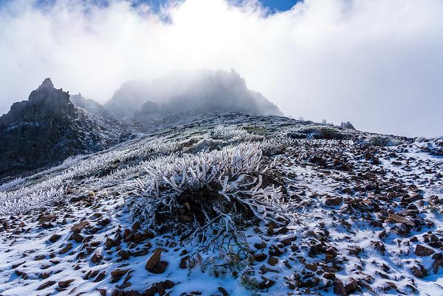 赤岳を見上げる