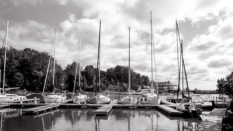 Line up of Sailboats