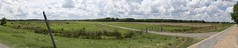 Field Panorama 2