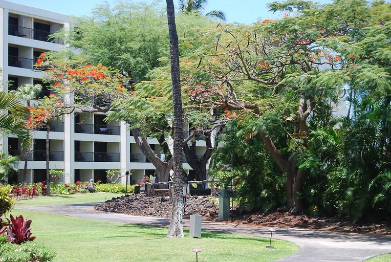 Hawaii Wildfire Summit 2018 - Summit Day 2 5/3/18