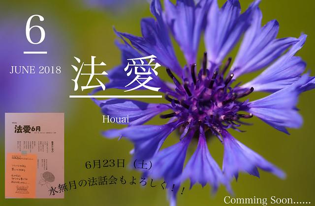 ZIN_5429