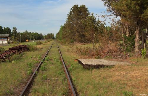 Springbrook Station Platform