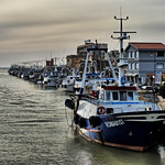 The Fishing Fleet at Fiumicino