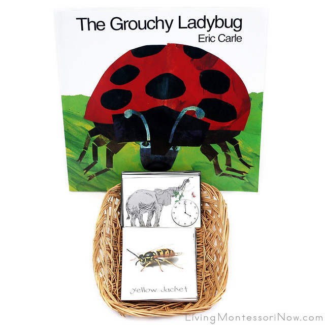 The Grouchy Ladybug Book with Sequencing and Matching Cards