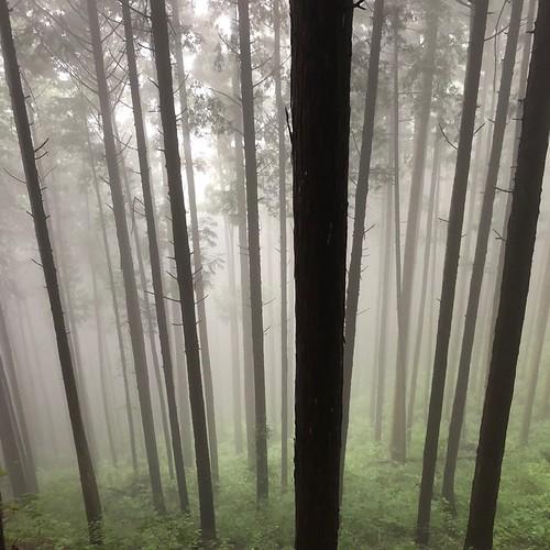 和田峠〜陣馬山