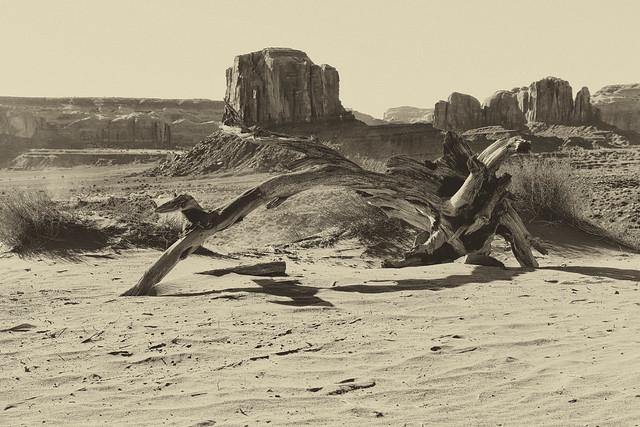 Navajo Culture
