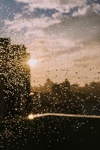 Drops of sun