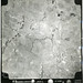 Aerial Photograph - MUSWELLBROOK 1958, BOX C3031