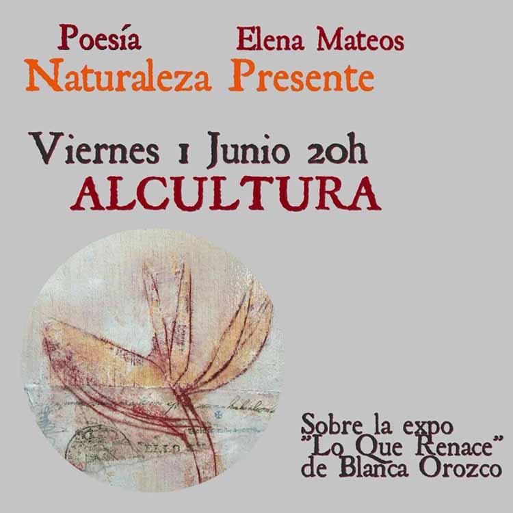 Cartel recital haikus Elena Mateos2