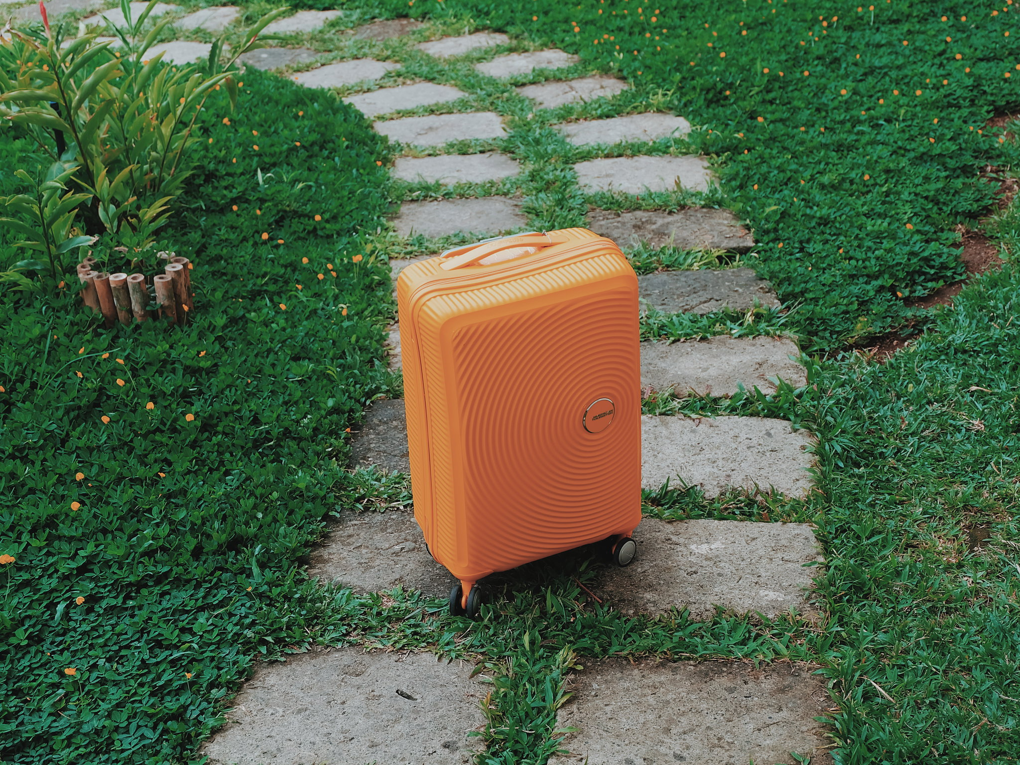 That Yellow Luggage: American Tourister Curio Review