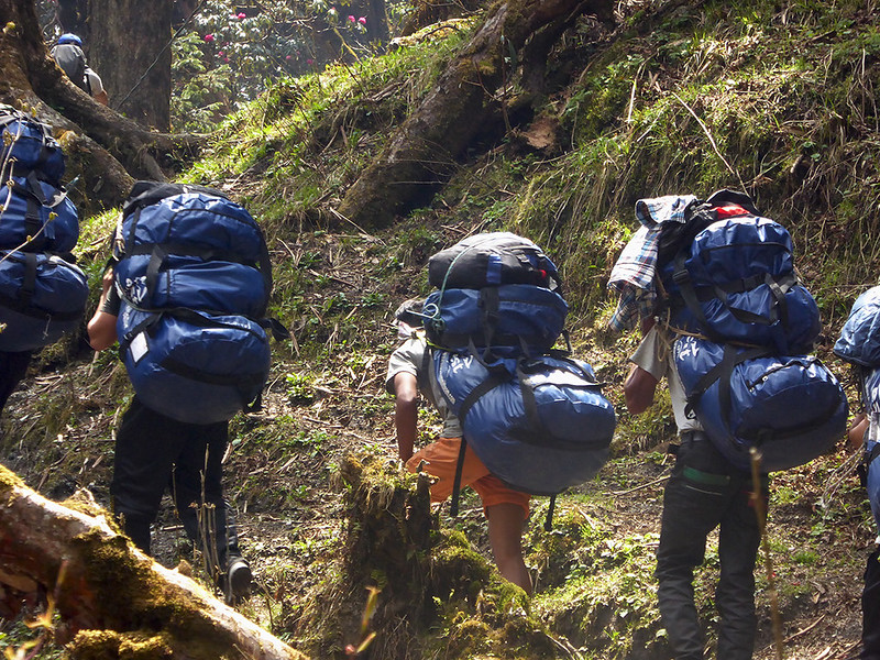 a group of Sherpa's carrying big loads up the tekking trail in the Himalayan mountains in Nepal