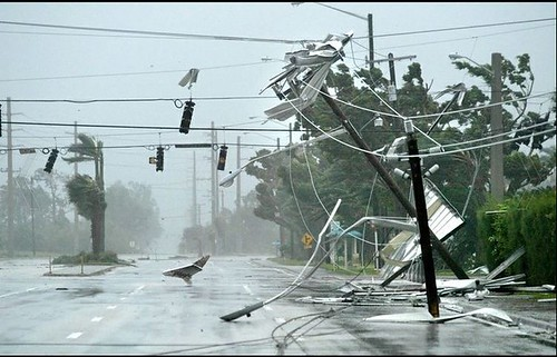 Losses after Hurricane Wilma
