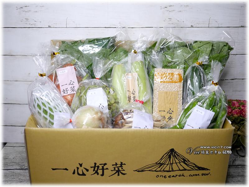 0515一心蔬菜009