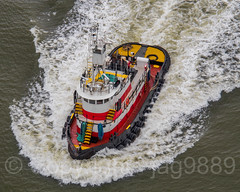Shelby Tugboat on the Hudson River, New York City