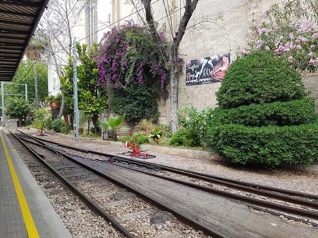 Train Soller à Palma 42742096822_0ffccbf861_z