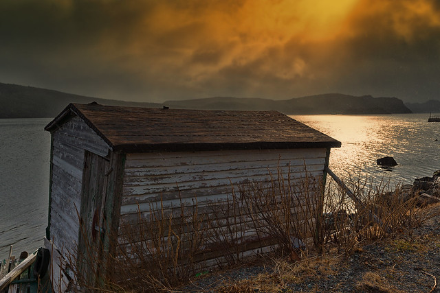 Old Shed - Dunville