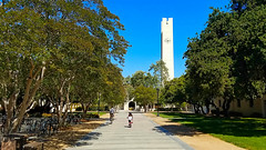 Path to Walker Tower, Pomona College