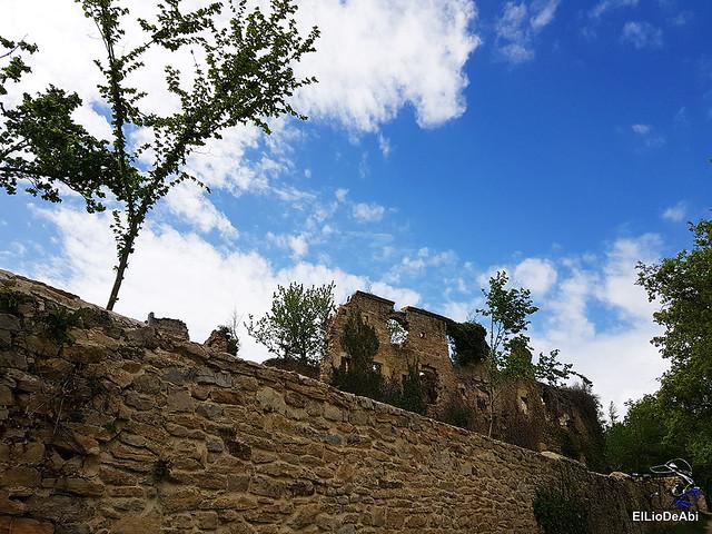Monasterio de Santa María de Rioseco (1)