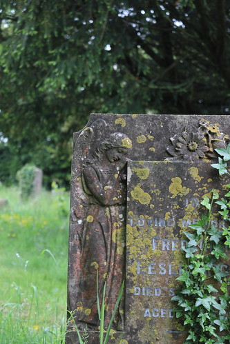 Churchyard, Piddletrenthide 3