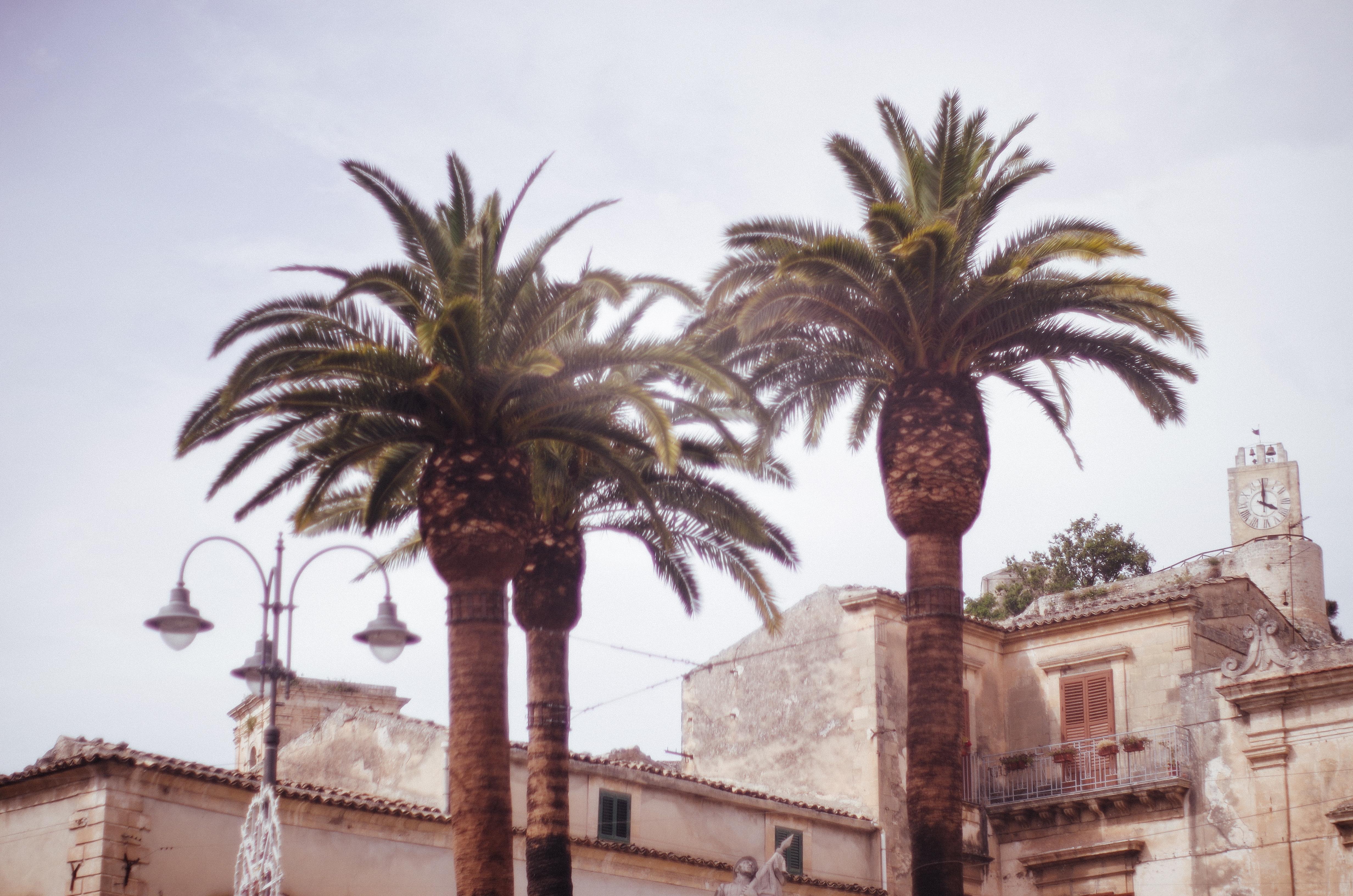 SICILY - Modica