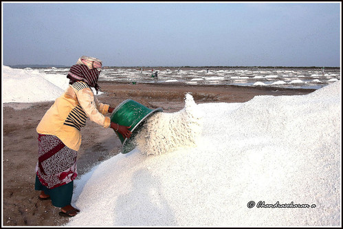 salt production storage marakkanam tamilnadu india canoneos6dmarkii tamronef28300mm saltpans