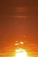 sunflecks on a loch...
