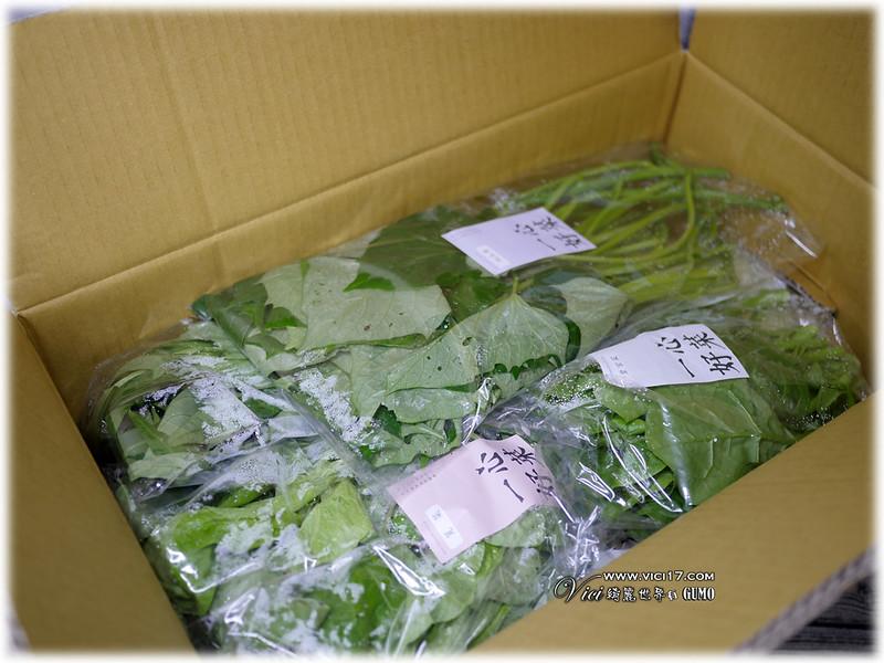 0515一心蔬菜005