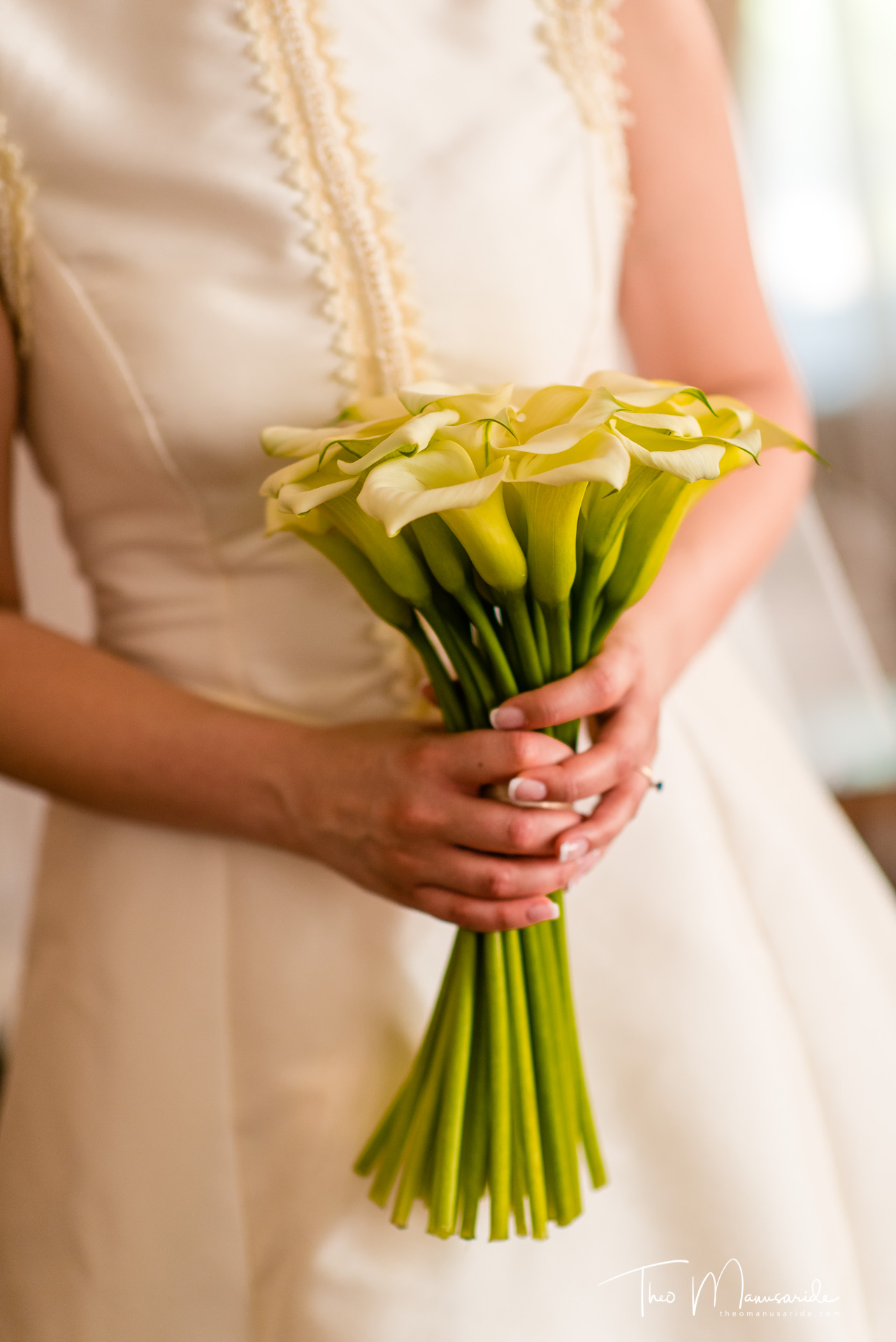 fotograf-nunta-domeniul-manasia-19