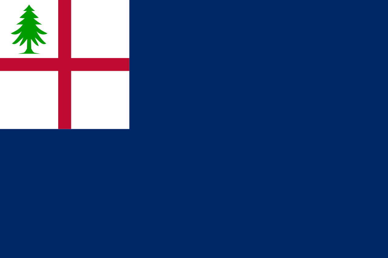 The blue Bunker Hill Flag. The blue field may be the result of an error in a wood engraving; the actual