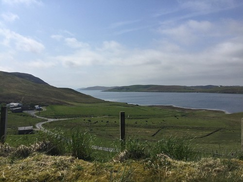 Near Scalloway
