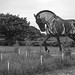 The Featherstone War Horse 1