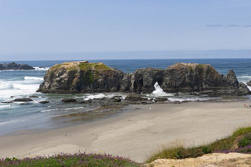 Oregon Coast and Sea Stacks-026