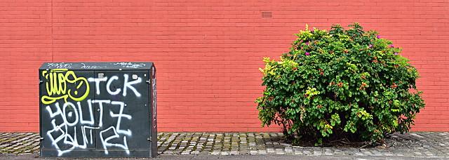 Sunshine on Leith, another, Nikon D750, AF Zoom-Nikkor 28-70mm f/3.5-4.5D