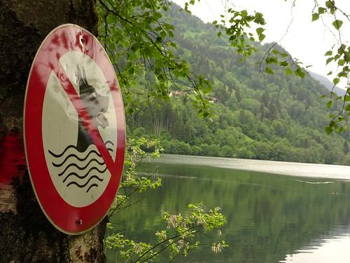 Keine Hunde im Afritzer See