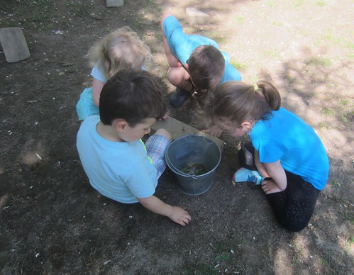 blue kids collecting insects