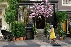 Prinselijk Gebonden Florist in Amsterdam