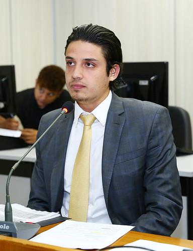 17ª Reunião Ordinária - Comissão de Legislação e Justiça