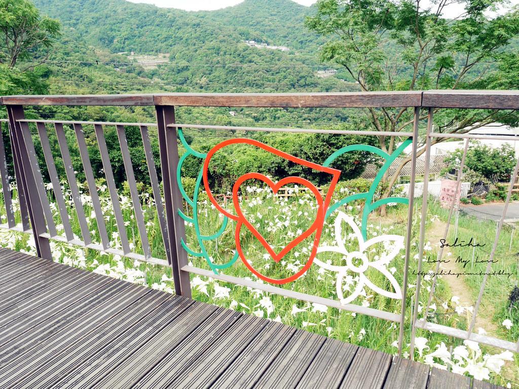 內湖碧山巖景點一日遊推薦同心池吊橋 (3)