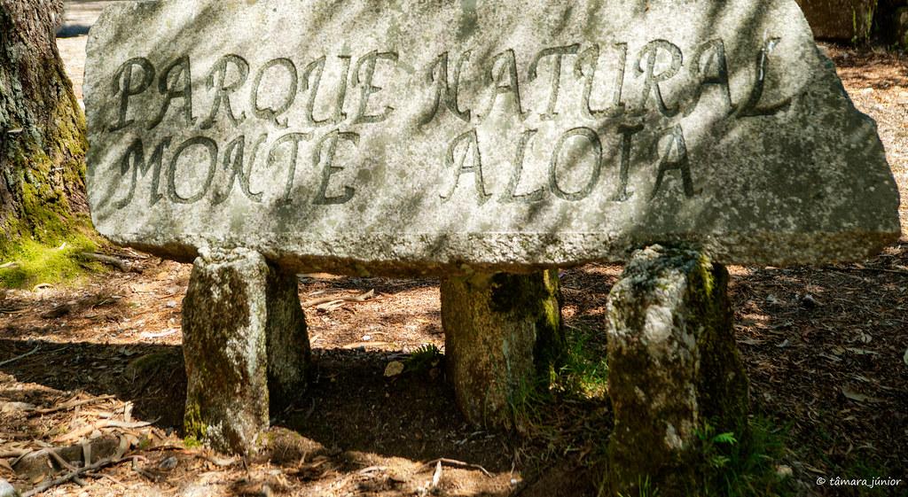 A.- Rota do Monte Aloia (276)