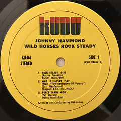 JOHNNY HAMMOND:WILD HORSES ROCK STEADY(LABEL SIDE-A)