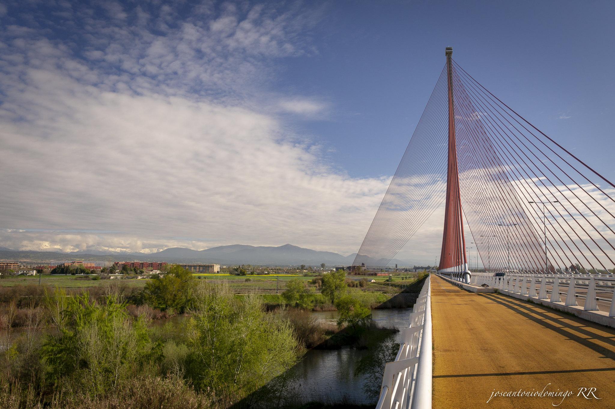 Puente de Castilla La Mancha (Talavera de la Reina)