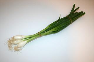 11 - Zutat Frühlingszwiebeln / Ingredients scallions