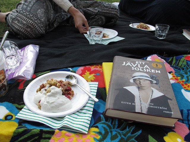 thursday, bookclub at my place, öresundsparken, helsingborg