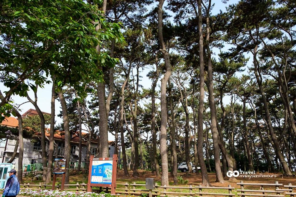 Daewangam Park