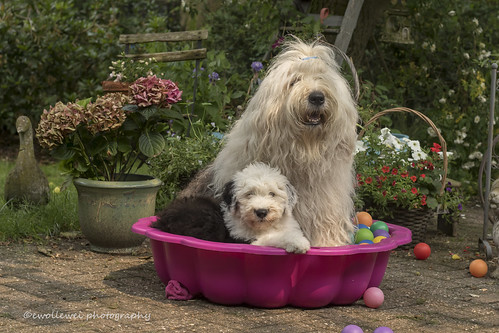 a ball pool is nicer with the two of us... :)