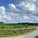 Vineyard Way